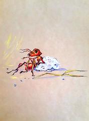 1844_2 (Мария Юрист) Tags: 365 illustration иллюстрация животные насекомые insects animals brushpen ручкакисть брашпен художка пастель