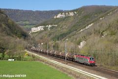 BB36019 sur train Vénissieux Modane vers St Rambert en Bugey (philippedreyer1) Tags:
