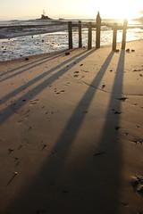 The sun rises... (neil.bather@xtra.co.nz) Tags: sunrise awhitu regional park auckland shadows seascape sea beach