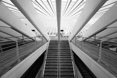 Liege Guillemins 2 (Ellen van den Doel) Tags: lines belgie building architectuur fotoclub lijnen guillemins structure liege stairs luik fotoweekend black calatrava modern structur trap ardennen architecture 2017 gebouw white station april liège wallonie belgië be