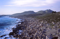 The Coast (demeeschter) Tags: greece peloponnes methoni castle fort venetian heritage historical archaeology beach sea