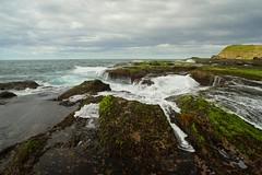 Frazer Beach Wave Action (Paul Hollins) Tags: catherinehillbay newsouthwales australia nikond750 nikon1635mmf4 seascape frazerpark
