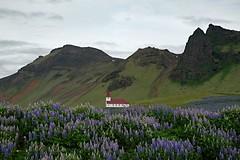 Деревня Вик на южном побережье. Исландия (varfolomeev) Tags: 2016 исландия море горы iceland sea mountains church церковь fujifilmxt10