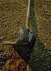 SPADE & NEUTERED (akahawkeyefan) Tags: shovel bent ruined gravel street kingsburg dave meyer