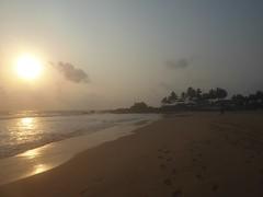 dusk (lesleydugmore) Tags: twilight sunset dusk sun ahungallacoast srilanke ceylon asia outside outdoors trees