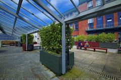 Biology School at Rooftop (T Ξ Ξ J Ξ) Tags: newzealand wellington fujifilm xt1 teeje fujinon1024mmf4 day rooftop school university biology