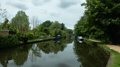 Grand Union Canal (John Steedman) Tags: herts hertfordshire uk unitedkingdom england イングランド 英格兰 greatbritain grandebretagne grossbritannien 大不列顛島 グレートブリテン島 英國 イギリス ロンドン grandunioncanal canal bridge