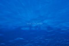blue. (Imaginarium 2.1) Tags: blue sea sun sunbeams shadesofblue chania crete bvs bazilvansinner bazilvansinnerphotography nikon nikond5200 sigmalens shades