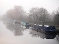 River Lea, Hertfordshire-1020875 (chrisyatesuk) Tags: leevalleynaturereserve riverlea autumn earlymorningsun hertfordshire landscape monochrome towpath