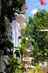 White orbs (LarryJay99 ) Tags: southfloridasky outside queenofsheeba foliage lightfixtures plant florida plants patio bluesky westpalmbeach canon60d photostream canonefs18135mmf3556is
