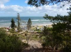 View of Seacliff Beach (mikecogh) Tags: seacliff view beach coast bush sanddunes horizon