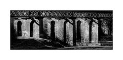 Viaduct arches (tkimages2011) Tags: olympus digital camera sankey valley sthelens merseyside sun shadows brick arches railway bridge viaduct mono monochrome outdoor