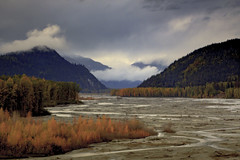 Chilkat River Valley in Autumn (blkwolf1017) Tags: chilkatriver haines alaska river autumn fall orange colors spruce clouds canon50d sigma2470mm