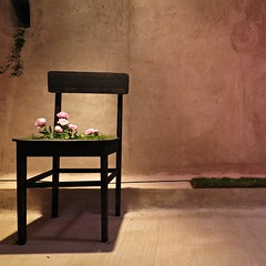 Self Contained (di.diana) Tags: chair flower pink tunel grič floraart seat green grass