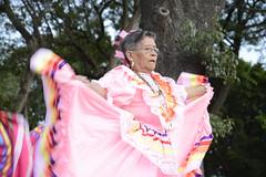 danza flolklorica de casa del abue (15) (Gobierno de Cholula) Tags: que chula cholula danza danzapolinesia danzasprehispánicas libro
