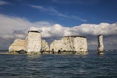 old harry rocks (Mark Rigler UK) Tags: old harry rock cliff swanage poole dorset england