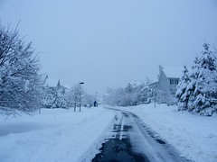 Snowy Road (Stanley Zimny (Thank You for 24 Million views)) Tags: road winter snow seasons white