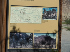 Q3266913 Joshua Tree National Park White Tank map (ceztom) Tags: march 26 2017 wilsoncanyon whitetank joshuatree nationalpark
