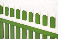 Snow covered (BetterBook) Tags: cold fence freezing frost frosty garden green ice icy season siberian snow snowcovered white winter