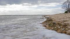 Mersea shore