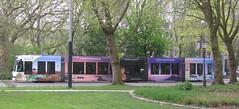 "GVB tram 2097 ""Wonderful Indonesia"" (streamer020nl) Tags: tram strassenbahn 2097 3 gvb indonesia banyuwangi amsterdam 2017 030517 holland nederland netherlands paysbas niederlande west"
