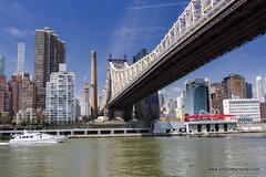 Queensboro Bridge from Roosevelt Island (doveoggi) Tags: newyork city rooseveltisland queensborobridge bridge boat eastriver