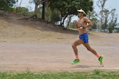 Miguel Márquez (magnum 257 triatlon slp) Tags: miguel márquez triathlete triatlon triatleta triathlon potosino slp team magnum don marqueztri miguelmarqueztricom run running pista tangamanga parque park méx salming