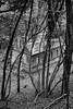 Cloaked (ShrubMonkey (Julian Heritage)) Tags: abandoned derelict ruin victorian schoolhouse chapel bedham hidden secret sony alpha woodland wood lost cloaked bw mono sonyalpha