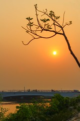 The sky takes on shades of orange during sunrise and sunset, the colour that gives you hope that the sun will set only to rise again. (ibtihajtafheem) Tags: nature naturelovers naturelover naturephotography sunrise sunset sunsetporn natureporn sun sky skyporn sunsetlover sunsetlovers evening night orangesky