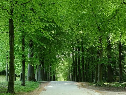Parc du château de Gaasbeek
