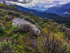 Teton Spring (James Neeley) Tags: tetons grandtetons tetoncanyon landscape westside idahoside jamesneeley