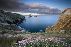 Pointe de Pen Hir (Njones03) Tags: bretagne bretagne2017 nicolassavignat presquiledecrozon seascape camaretsurmer france fr