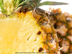 Pineapple (Bitter-Sweet-) Tags: vegan food fruit vegetables whole wholesome fresh produce macro closeup details texture pineapple tropical cut insides interior raw sweet juicy