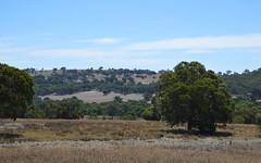 1851 Mount Hope Road, Coolah NSW