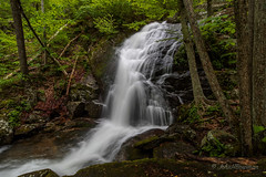 Crabtree Falls - High Flow (John H Bowman) Tags: virginia nelsoncounty virginiamountains waterfalls cascadingfalls virginiawaterfalls crabtreefalls riversandstreams crabtreecreek nationalforests georgewashingtonnf spring may2017 may 2017 zeissmilvus2818