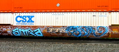 (timetomakethepasta) Tags: csx intermodal freight train graffiti art amra 2017 ttx benching selkirk new york photography