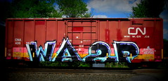 wasp MFK SYW (timetomakethepasta) Tags: wasp mfk syw freight train graffiti art boxcar cn cna canadian national benching selkirk new york photography