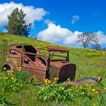 Rusty Car and Balsamroot 4634 B thumbnail