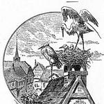 Andersens märchen  1900 gravure c thumbnail
