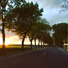 Have a fantastic Friday evening! #tgifridays #explore #outofthecar #ontheroad #imnotdriving  #mood #sunsets #treelovers #exploregermany #blurry (fireleaf) Tags: instagramapp square squareformat iphoneography uploaded:by=instagram skyline