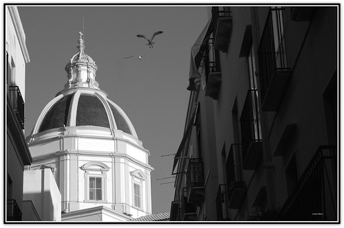 Cupola chiesa S Francesco