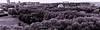 Petite promenade photographique parisienne. (greegpakary) Tags: roof building lovers mur scale skin snake écaille bw nb white black blanc et noir needle ciel toit grey shade philarmonique paris architecture sky cloud geometry stair poetry pattern wall eiffel tower sphere geode lavillette green parc park forest breath grandparis travel journey passion love momentforlife shine noiretblanc blackandwhithe intemporel up hauteur ecaille light france blackandwhite patern structure architure motif pakaryspicture