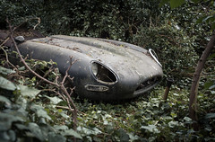 Lost E-Type (sj9966) Tags: abandoned etype jaguar decaying decayed woods unrestored forgotten urbex united kingdom uk rotten bonnet 1960s icon british supercar iconic sports car greatbritain