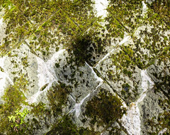 Old stone wall covered with moss (phuong.sg@gmail.com) Tags: abstract aged ancient antique backdrop background backgrounds block boulder brown brownstone buildings castle cement clay cobblestone concrete construction covered detail dirty facade grass gray green growth grunge historical lichen moss old ordinary outdoor pieces plants rock rough rustic solid stone stonewall structure surface textured textures wall