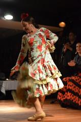 DSC_0799 (rusesmeralda) Tags: flamenco madrid spain dancing dance baile bailaor bailaora authentic tradition