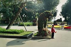 park (InSoManyWords) Tags: film 35mm fujisuperia200 fujifilm hanoi vietnam boy