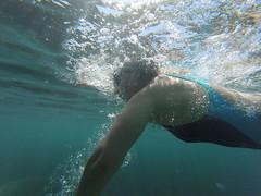 G0108030 (Visit Pilar de la Horadada) Tags: swimmers meeting point hibernismare swim natación nadar milpalmeras pilardelahoradada alicante costablanca vegabaja comunidadvalenciana quedada beach strand swimm