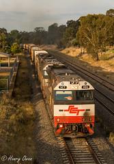 Glowing Glenrowan (Henry's Railway Gallery) Tags: sct006 sct015 sct003 sctclass emd diesel edi downeredi sct sctlogistics 7bm9 bm9 brisbane laverton freighttrain loadedfreighttrain glenrowan