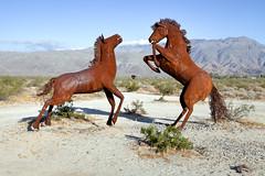 Borrego Springs Metal Horses (KeithJ) Tags: california desert borregosprings metal sculptures art horses ricardobreceda dennisavery galletameadowsestates outdoors