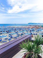 View from the terrace of the restaurant to the beach and the sea, Italy, Riccione (folomey) Tags: adriaticsea beach blue coast day emiliaromagna europe flower italy outdoor outdoors riccione rimini sea sky spiaggia summer sunbed sunshade terrace tourism travel trip vacation view water